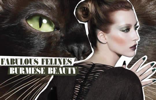 MAC-Fabulous-Felines-Burmese-Beauty-3